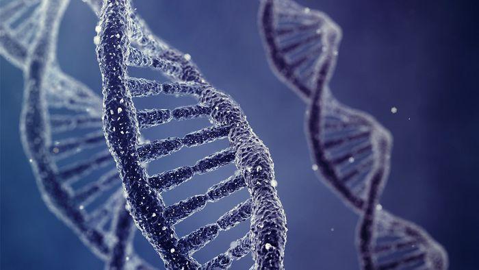 China usa tecnologia norte-americana para perseguir pessoas através de DNA