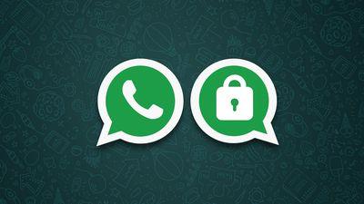 Pesquisadores acessam dados encriptados de 45 mil usuários de grupos do WhatsApp