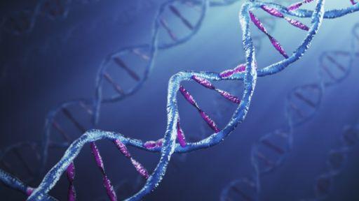 Um quinto dos artigos científicos de genética tem erros causados pelo Excel