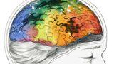 Anúncios que levam em conta o perfil psicológico do usuário têm mais sucesso