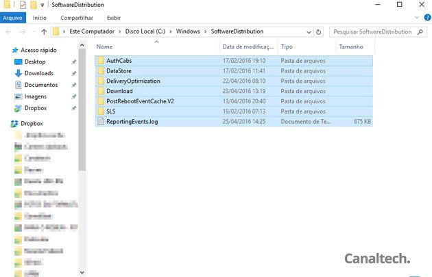 Esta pasta armazena todos os arquivos baixados pelo Windows Update. Você pode exclui-los, pois o sistema baixará tudo de novo