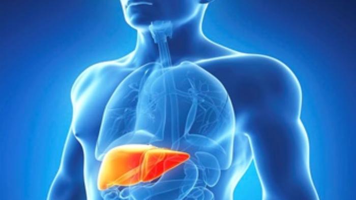 Pesquisa de Araraquara cria molécula que elimina fases do vírus da hepatite C