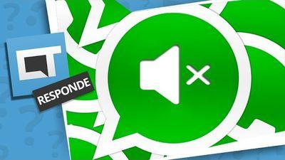 Como silenciar grupos do WhatsApp e impedir sons e notificações? [Dica de App  