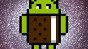 Há uma homenagem ao Nyan Cat dentro da nova versão do Android no Galaxy S II