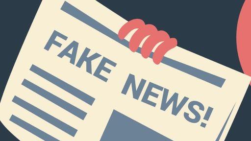 Ministério da Saúde tirou 11 mil dúvidas no WhatsApp sobre fake news em um ano