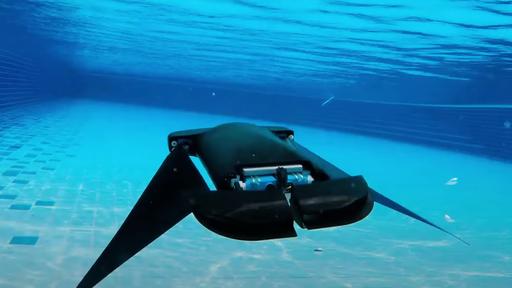 7 animais tão fascinantes que inspiraram a criação de robôs