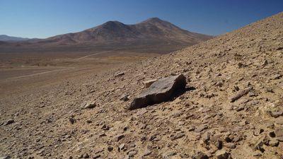 Cientistas descobrem como micróbios sobrevivem em ambiente similar ao de Marte