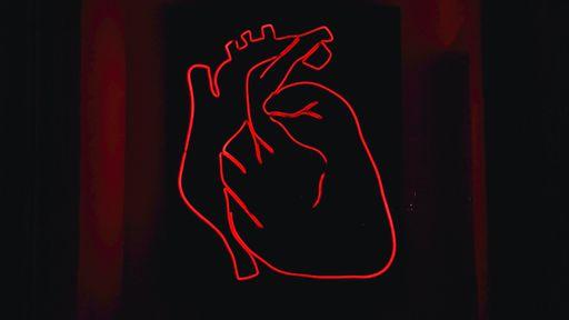 Pesquisadores criam válvula cardíaca artificial capaz de crescer no coração