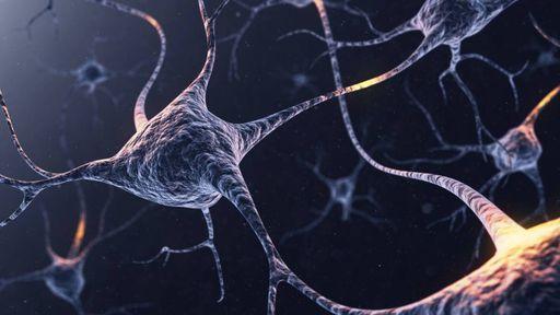Comportamento caótico do cérebro inspira a criação de IAs mais eficientes