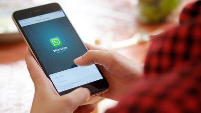 Fake news sobre febre amarela no WhatsApp viram notícia internacional