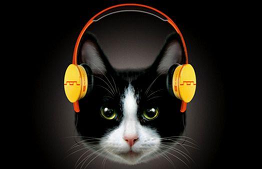 Fones de ouvido para gatos