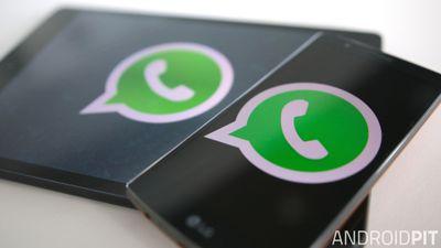 WhatsApp chega aos tablets Android, mas só para quem é beta tester