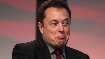 Cidade do Canadá nomeia seu mascote em homenagem a Elon Musk