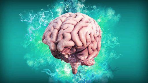 AI muda a maneira como cientistas entendem o cérebro humano