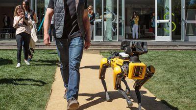 Jeff Bezos aparece passeando com um cachorro-robô na Califórnia
