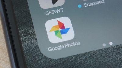 Google Fotos ganha nova função para agrupar fotos de cães e gatos