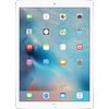 iPad Pro Wifi