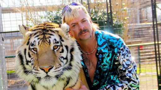 Crítica   A Máfia dos Tigres apresenta o bizarro mundo dos amantes de felinos
