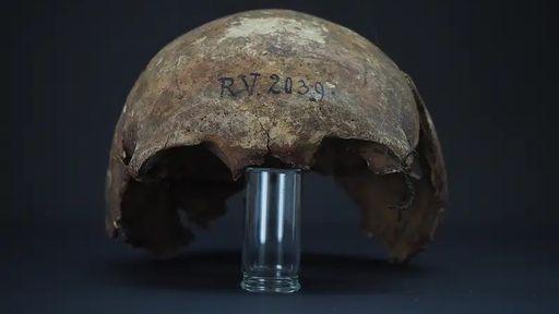 Bactéria da peste bubônica é encontrada em crânio de mais de cinco mil anos