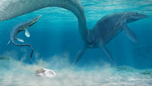 Primeiros dinossauros botavam ovos moles como os de tartarugas, diz estudo