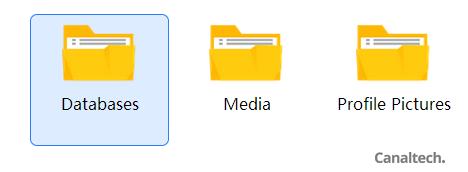 Dentro da pasta do WhatsApp, acesse a pasta Databases para visualizar os arquivos de histórico de conversas do aplicativo