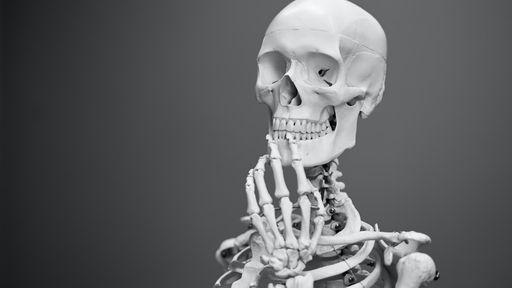 Por que nossos ossos estalam?