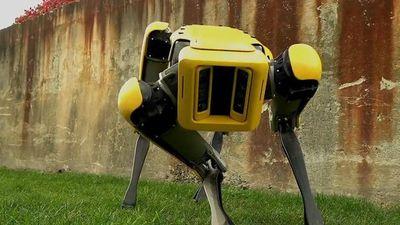 Boston Dynamics divulga vídeo do robô SpotMini dançando ao som de Bruno Mars