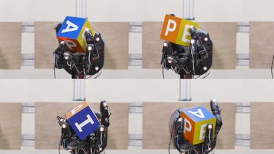 Empresa cria IA capaz de aprender sozinha, sem interferência humana