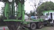 Este caminhão faz transplantes de árvores inteiras