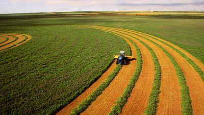 Plataforma milionária voltada para agricultores recebe rodada de investimentos