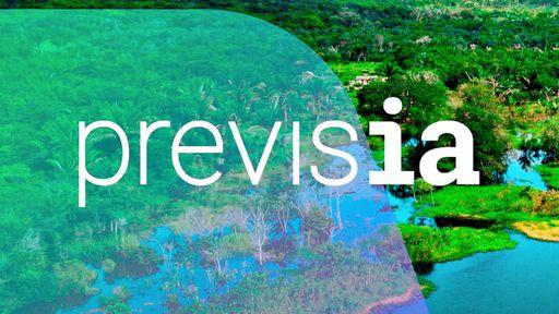 Microsoft usa IA em plataforma para proteger a Amazônia do desmatamento