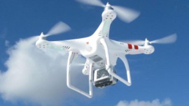 Homem que deixou drone cair na Casa Branca assume que estava bêbado