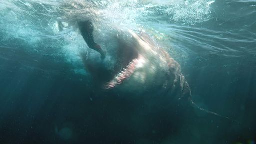 10 filmes de tubarão que vão fazer você se borrar de medo