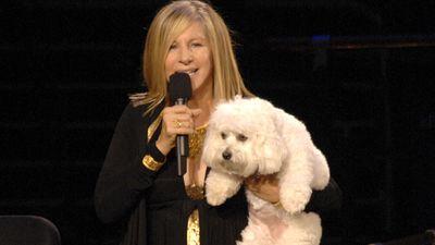 Barbra Streisand clonou sua cadela e você também pode fazer o mesmo