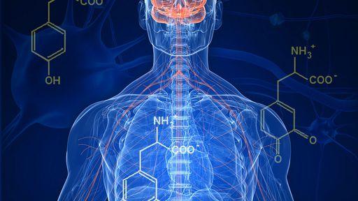Pesquisadores criam sistema que detecta o Mal de Parkinson com um telefonema