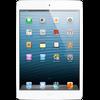 iPad mini 4 Wifi